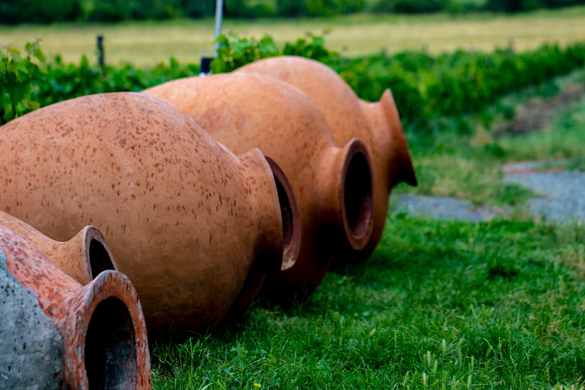 Amforor på grönt gräs